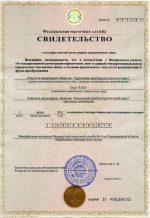 Форма 51001 образец – Свидетельство о государственной регистрации юридического лица. Форма N Р51001